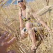 Happy woman in golden wheat field — ストック写真 #7193412