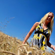 Happy woman in golden wheat field — Stock Photo