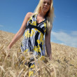 Happy woman in golden wheat field — ストック写真 #7193513