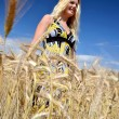 Happy woman in golden wheat field — ストック写真 #7193518