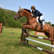 Show jumping — Stock Photo #7209100