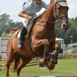 Show jumping rider - Stock Photo