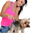 Stock Photo: Woman with dog clippers
