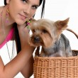 Young woman and sweet puppy playing around — Stock Photo #7458986