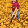 Little baby in an autumn park riding bike — Stockfoto