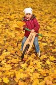 Little baby in an autumn park riding bike — Stock Photo