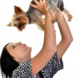 Girl playing with puppy dog — Stock Photo #7496211