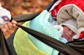 Baby girl in shopping bag — Stock Photo