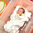 Newborn baby in open plastic box - Stock Photo