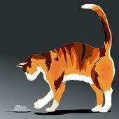 Cat vector — Stock Vector