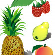 Set of vector fruits — Stock Vector