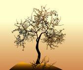 Trees vector — Stock Vector