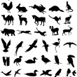 Animal silhouettes vector - Stockvectorbeeld
