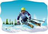 Skiing vector — Stock Vector