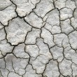 Stock Photo: Dry cracked ground