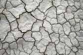 Dry cracked ground — Photo