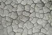 Dry cracked soil — Stock Photo