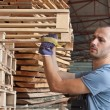 Stock Photo: Marraging pallets, horizontal shot