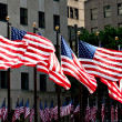 Stock Photo: AmericFlags