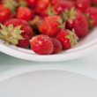 Fresh Strawberries with room for text - Stock Photo