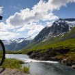 Mountain bike rider view — Stock Photo #6996776