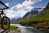 Dağ bisikleti rider görünümü — Stok fotoğraf