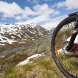 Mountain bike rider view - Stock Photo