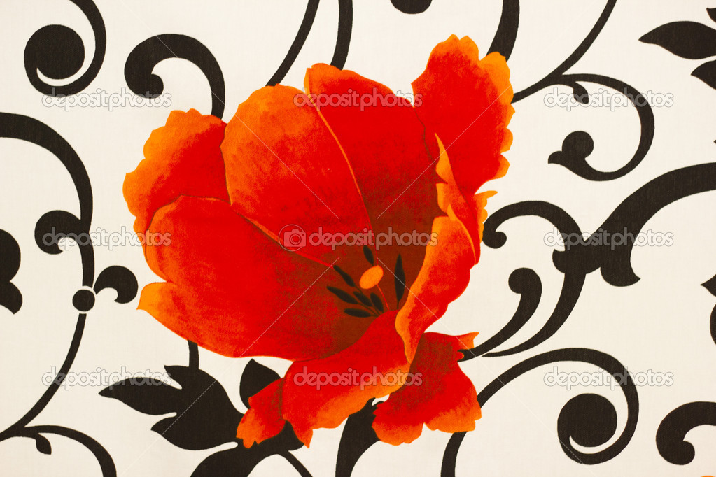 Red poppy on the wallpaper — Stock Photo #7035975