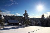 Casa bajo la nieve — Foto de Stock