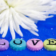 Flower and love - Stock Photo