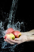 Apple and water — Photo