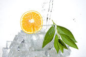 Orange and water — Stock Photo