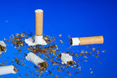 Sigarette — Stock Photo