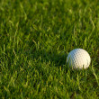 Golf Ball — Stock Photo #7200095