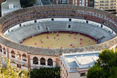 Bullring in Malaga, Andalusia (Spain). practicing the art of bullfighting. — Stock Photo