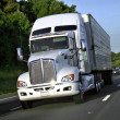 Big truck — Stock Photo #7140531