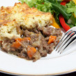 Stock Photo: Shepherds pie dinner