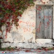 An overgrown property on Crete, Greece - Foto Stock