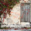 An overgrown property on Crete, Greece - Stock fotografie