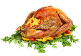 Festive turkey side view isolated — Stock Photo