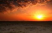 Qatar desert sunset — Stock Photo