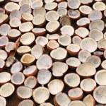 ケララ州で乾燥ココナッツ コプラ — ストック写真