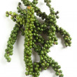 Green peppercorns vertical - Stock Photo