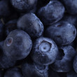 Постер, плакат: Blueberries macro