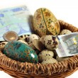 Euro nest egg — Stock Photo