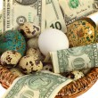 Nest egg in one basket — Stock Photo