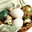 Stock Photo: Nest egg, perhaps, or else all eggs in one basket.