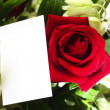 Red roses, orchids and a blank card - Stock Photo