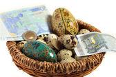 Euro nest egg — Stock Photo
