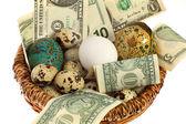 Nest egg in one basket — Stock Photo